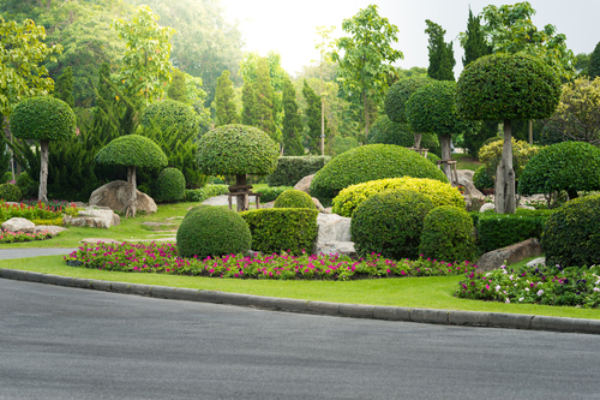 Garden Trees Landscaping Services