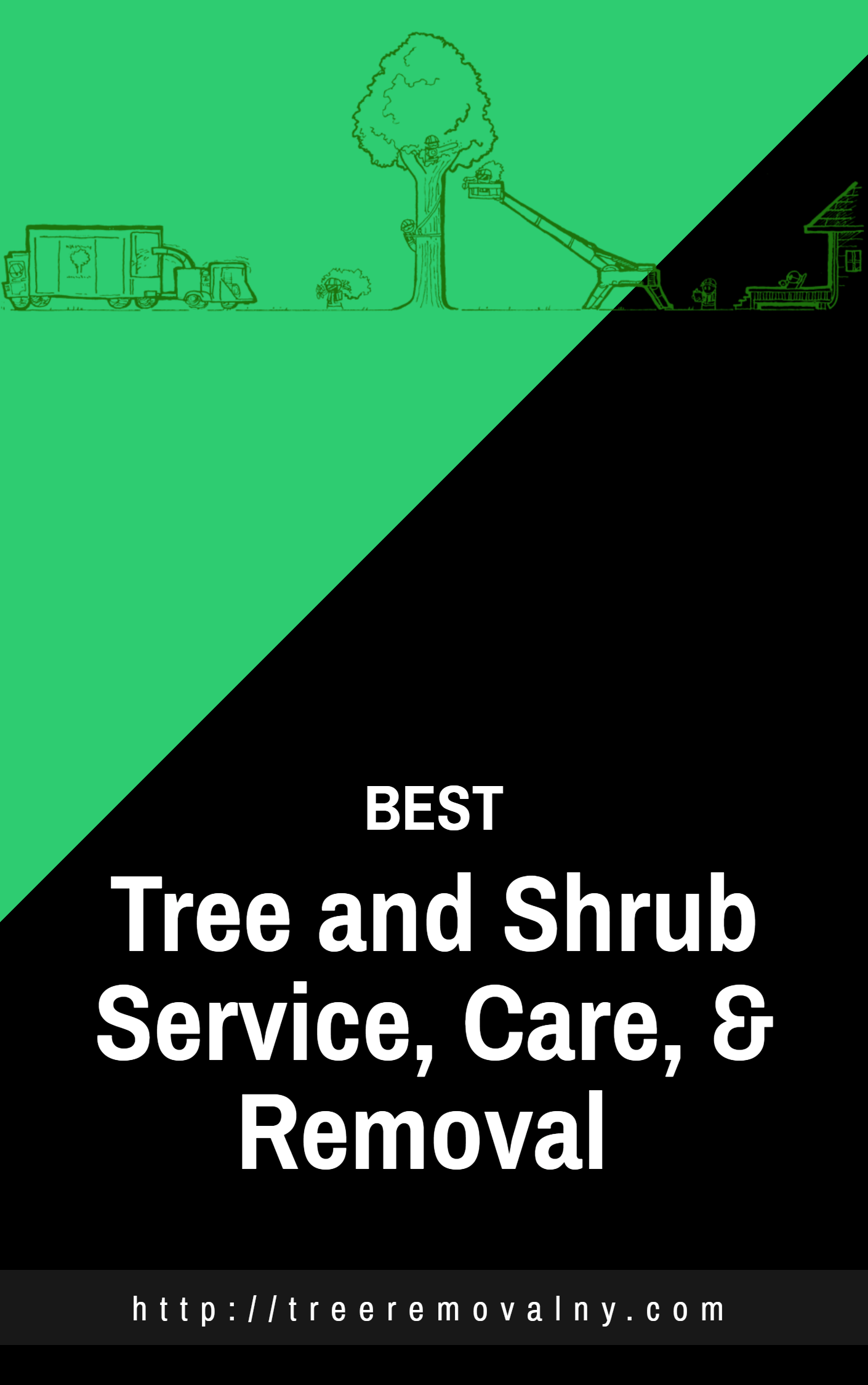 choose united trees and landscape